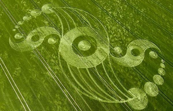 рисунки на полях:
